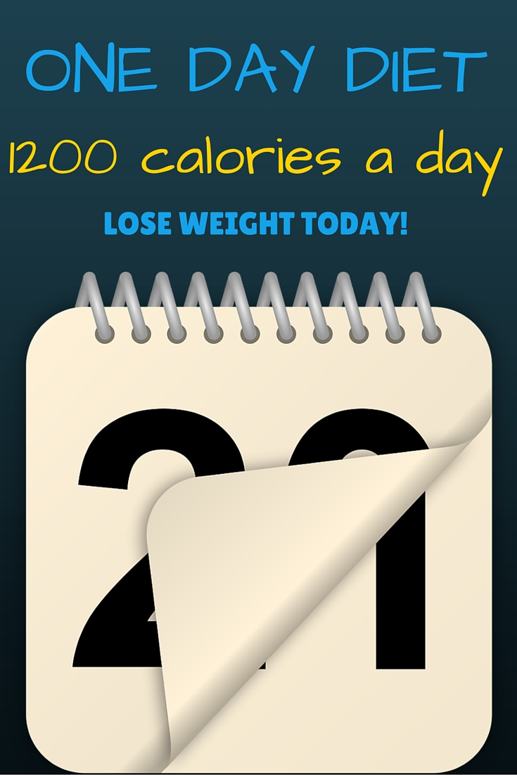 1200 calorie a day diet