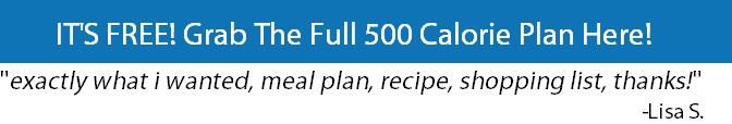500 calorie diet plan