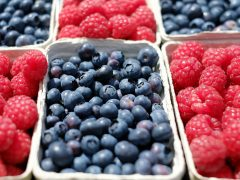 Why You Should Eat More Berries – From Disease Protection to Weight Loss