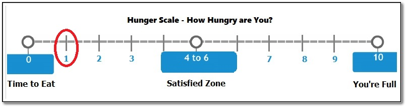 Hunger Cues Hunger Scale 1