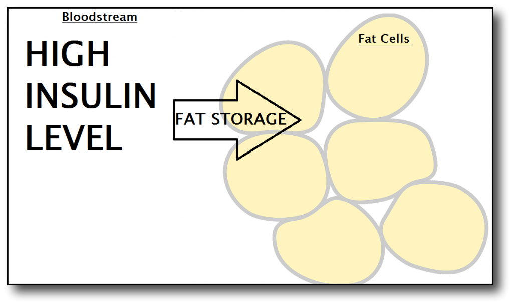 fruit and fat cells