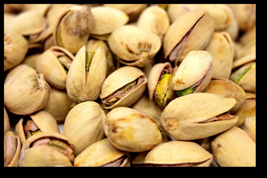 Probiotics and Fat Loss - Nuts