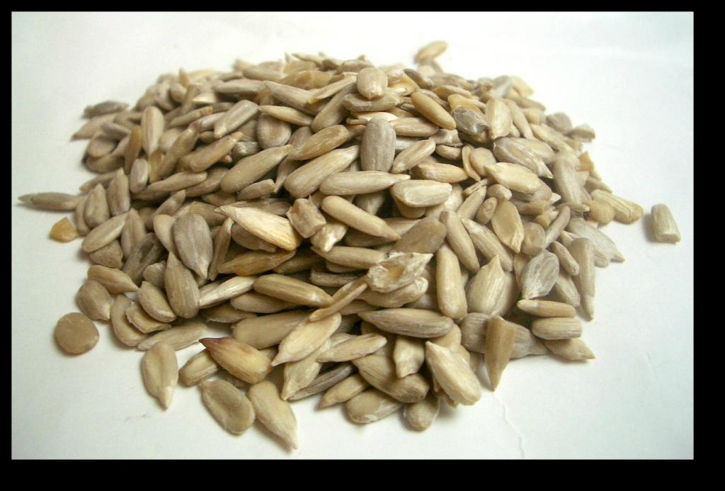 Probiotics and Fat Loss - Seeds