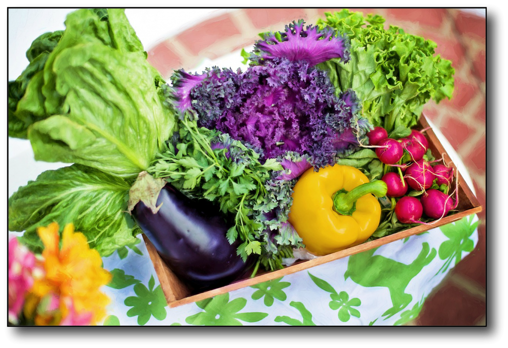 Starchy Vegetables vs Non-Starchy Vegetables garden
