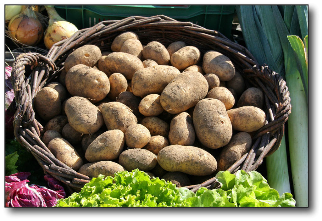 Starchy Vegetables vs Non-Starchy Vegetables potato