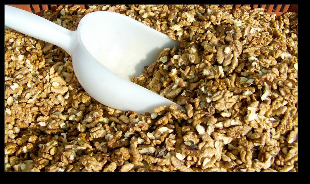 low-carb, high-fat food - raw walnut