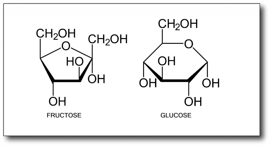 Honey on a Low-Carb Diet- Fructose and Glucose molecules