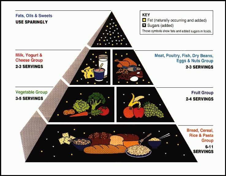 Type 3 Diabetes - USDA_Food_Pyramid