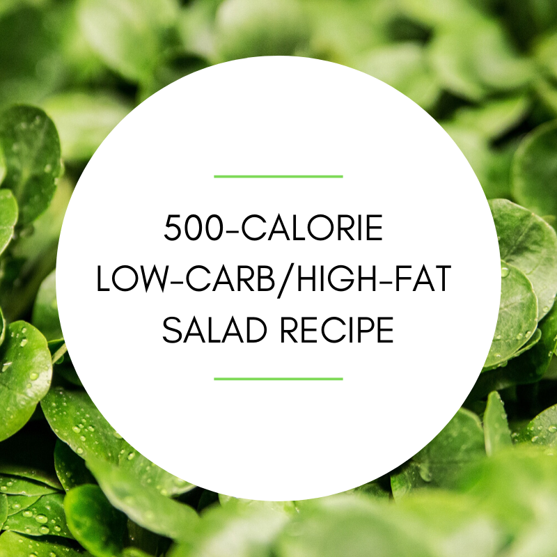 500 calorie low carb salad
