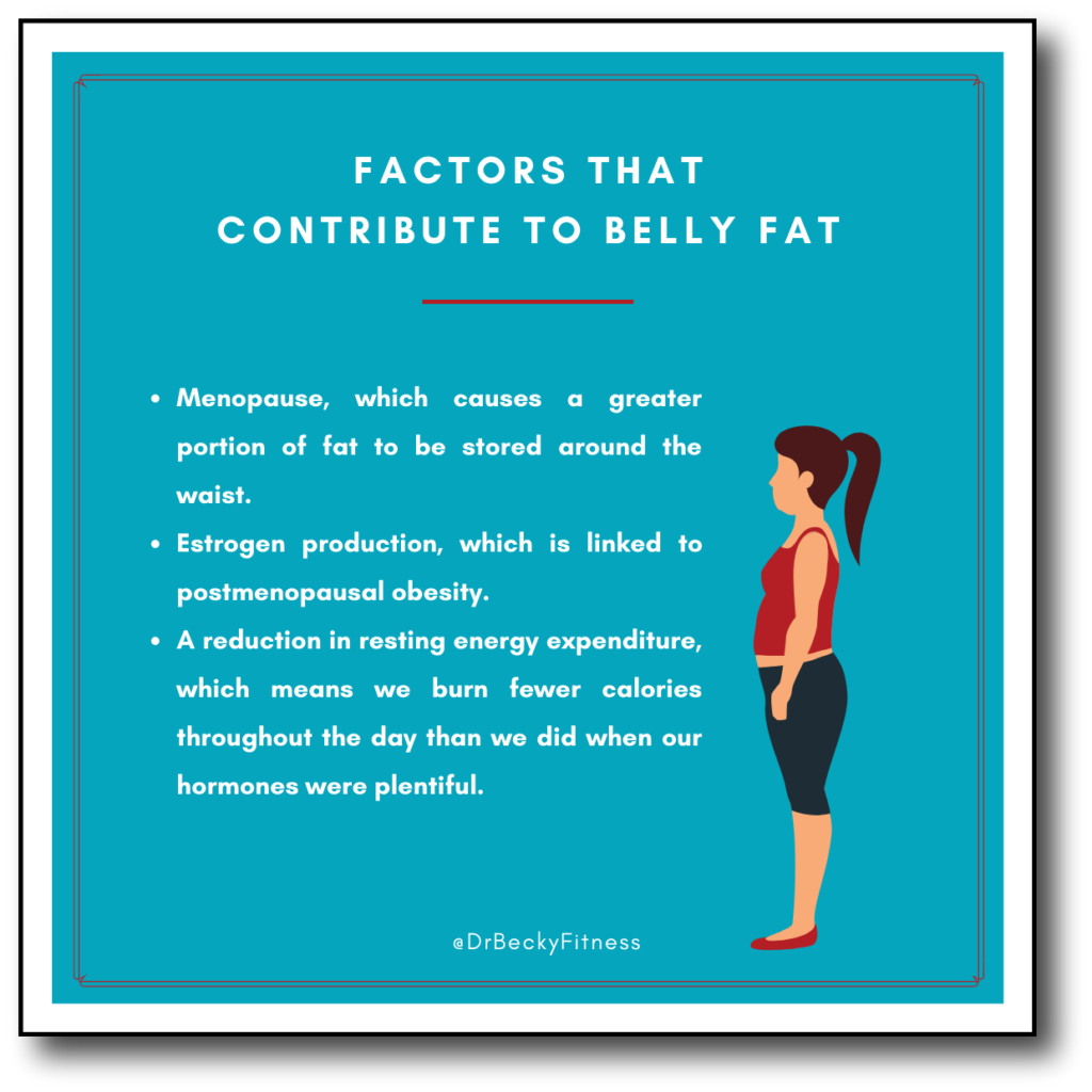 contributing factors to belly fat