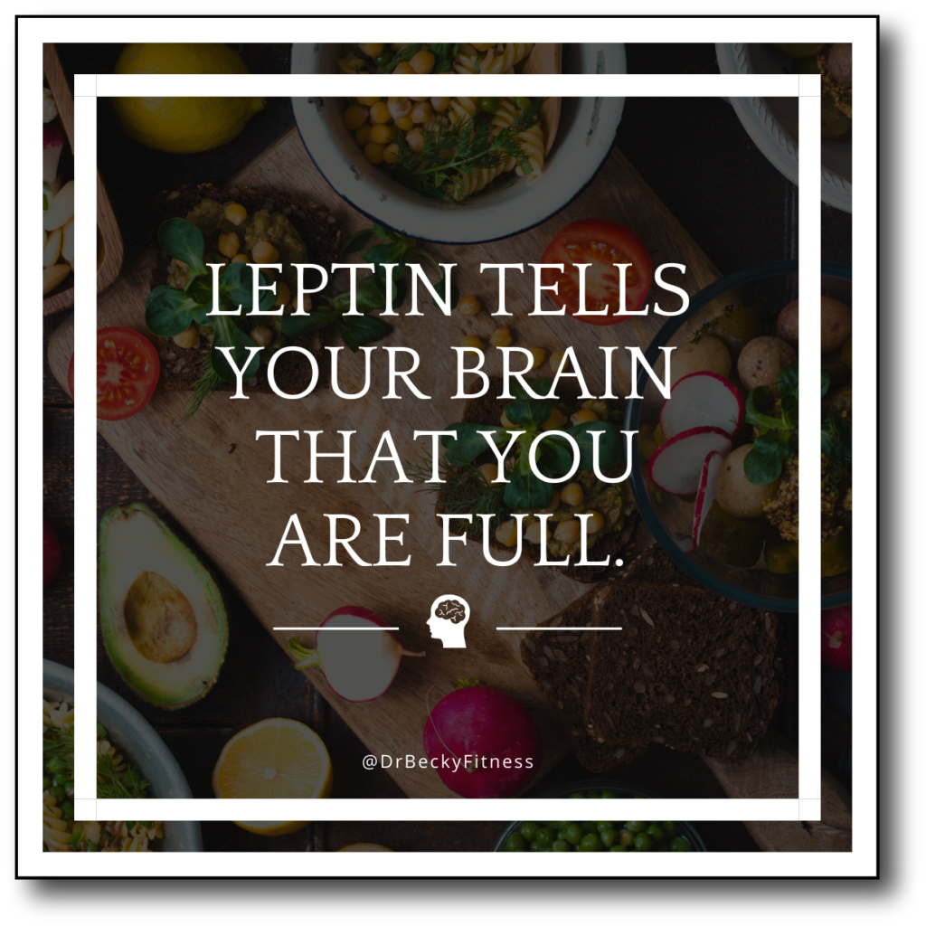 Leptin tells your brain that you are full.