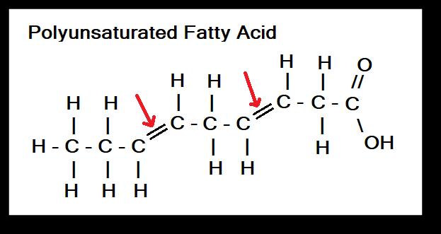 polyunsaturated fatty acid