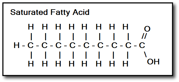 Saturated fat molecules are straight