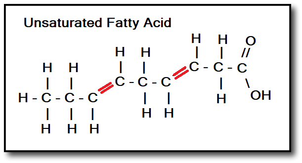double bonds of unsaturated fatty acids