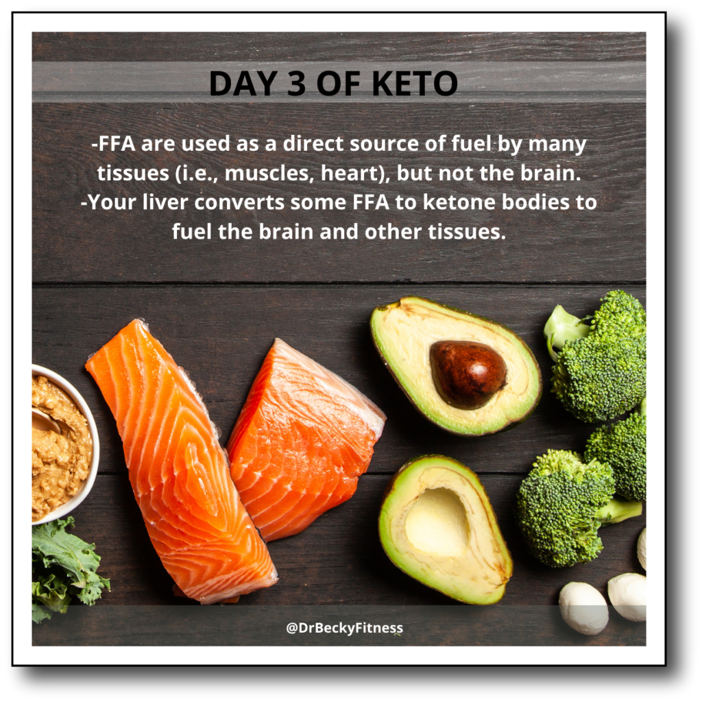 Day 3 of eating keto